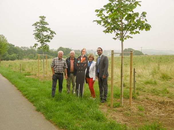 Kastanienbäume für Oberhonnefeld
